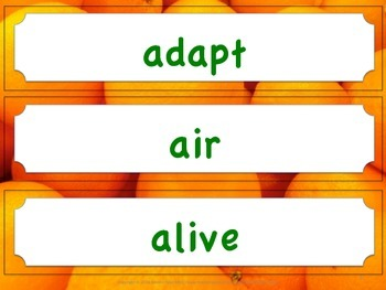 Florida Science Word Wall 2nd Second Grade Vocabulary NGSSS Aligned Orange Brder