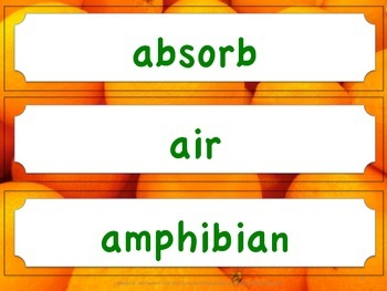 Florida Science Word Wall 3rd Third Grade Vocabulary NGSSS Aligned Orange Border