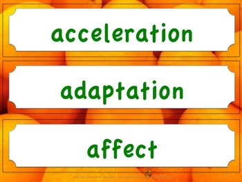 Florida Science Word Wall 4th Fourth Grade Vocabulary NGSSS Aligned Orange Brder