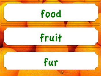 Florida Science Word Wall Kindergarten Vocabulary NGSSS Aligned Orange