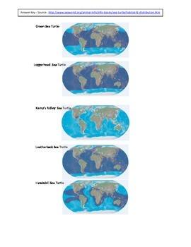 Florida Sea Turtles - Mapping Worldwide Distribution - Florida Coastal Systems