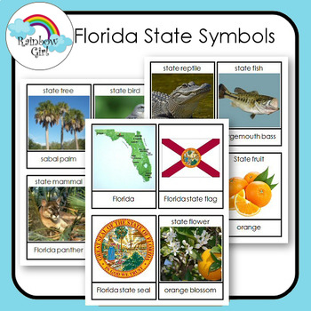 Florida State Symbols Cards