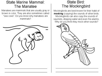 Florida State Symbols Coloring Booklet