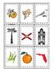 Florida State Symbols themed Memory Match Game. Preschool Game