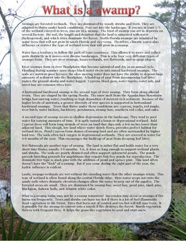 Florida Swamps Reading to be used with One-Pager Swamp Activity