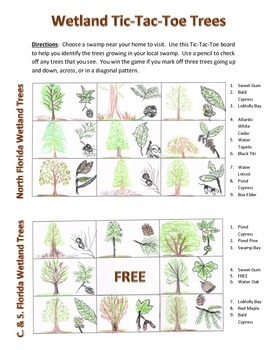 Florida Wetland Trees - Tic-Tac-Toe Field Trip Activity