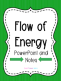 Flow of Energy Powerpoint and Notes
