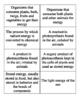 Flow of Energy Vocabulary Bingo