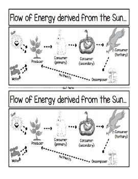 Flow of Energy from the Sun