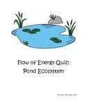 Flow of Energy in Pond Ecosystem Quiz