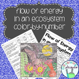Flow of Energy in an Ecosystem Color by Number