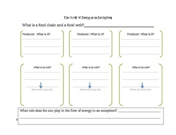 Flow of Energy in an Ecosystem Unit graphic organizers and worksheets