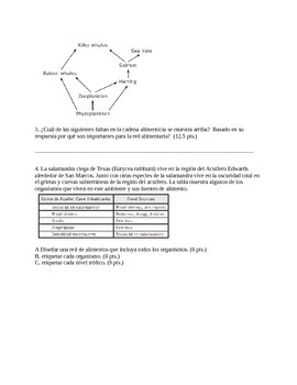 Flow of Matter Test- Spanish Translation
