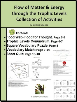 Food Web Collection of Activities