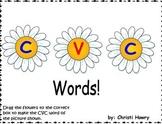 Flower CVC Words - Promethean Board Activity