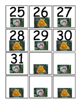 Flower Calender Numbers