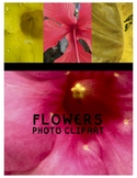 Flower Clipart (For Personal or Commercial Use)