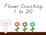 Flower Counting: 1 to 20