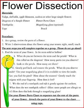 Flower Dissection Chart & Directions