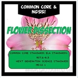 Flower Dissection Lab Activity FUN NGSS & CCSS Aligned