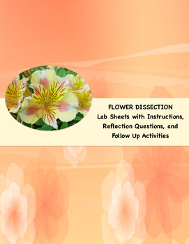 Flower Dissection and Follow Up Activities