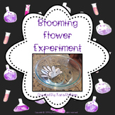 Blooming Flower Experiment