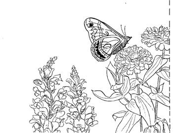 Flower Garden Mural