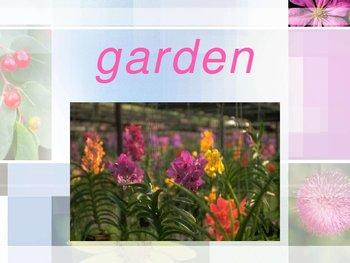 Flower Garden PowerPoint
