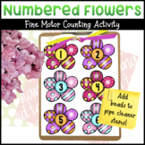 Numbered Flowers Fine Motor Counting Activity