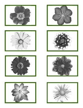 """""""Flower Match"""" Color to Black n White for Autism"""