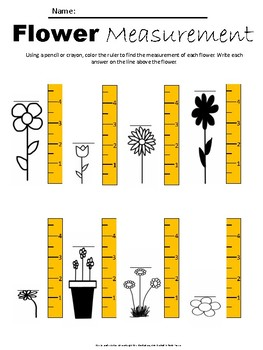 Flower Measurement Worksheet