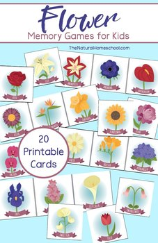 Flower Memory (Matching) Game (Recognition and Vocabulary Activities)