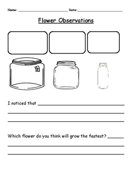 Flower Observations