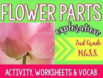 Flower Parts Exploration- 2nd Grade- (NGSS-2-LS2-1)