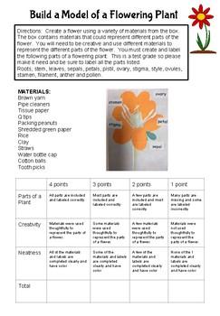 Flower Parts Project