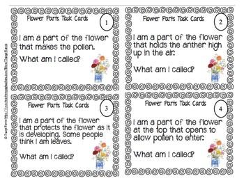 Flower Parts Task Cards