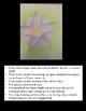 Flower Pastel Art