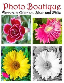 Flower Photographs!
