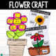 Flower Project: What does a flower need to Grow