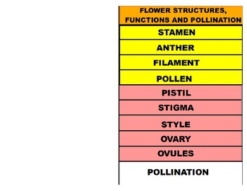 Flower Reproduction Structure and Function (YouTube Vodcast Notes)