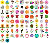 Flower SVG - Sunflowers, Roses, More - Beautiful Flower Ve