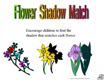 Flower Shadow Match