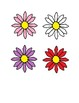 Flower Size Sorting Activity