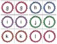 Flower/Spring Letter Match for Early Childhood- lowercase to lowercase