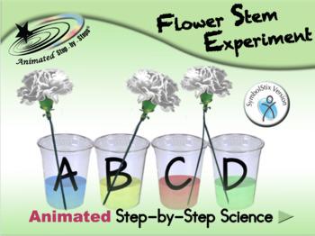 Flower Stem Experiment - Animated Step-by-Step Science - SymbolStix