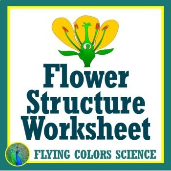 Flower Structure - Plant Sexual Reproduction Worksheet - NGSS MS-LS1-4 MS-LS3-2