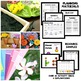 Flower Theme Preschool Lesson Plans
