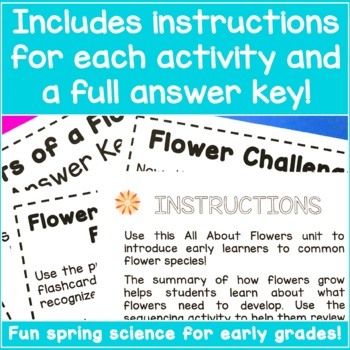 Flower Unit Study - All About Flowers!