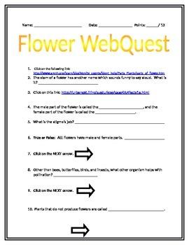 Flower WebQuest