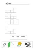 Flower Word Vocab Sheet